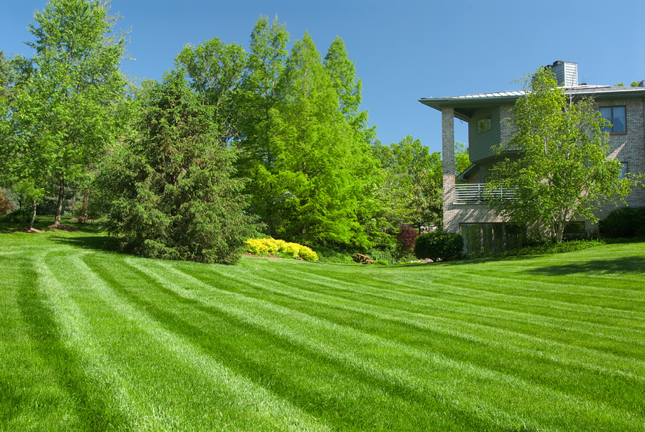 Turf : Lawnco : grass turf and lawn care renovation ...